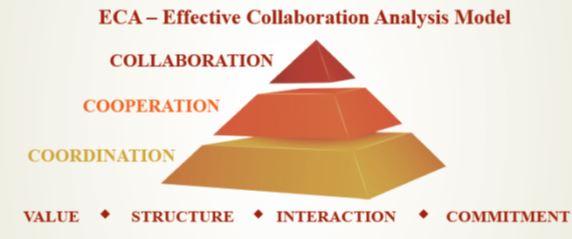 ניהול ממשקים ושיתופי פעולה בארגון - מודול ECA